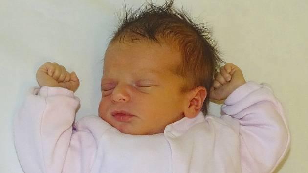 Mia Hrdá se narodila Michaele Hrdé z Lovosic 13. ledna v 17.07 hodin v Litoměřicích. Měřila 49 cm a vážila 2,59 cm.