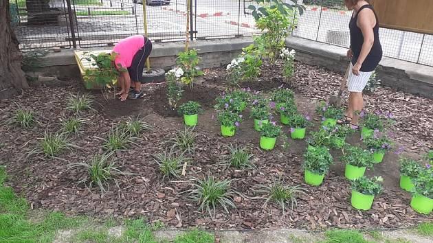 Rekonstrukce zahrady školy.