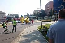 V Lovosicích přistál kvůli pokousání dítěte psem vrtulník