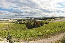 Zámecké vinařství Třebívlice otevírá brány