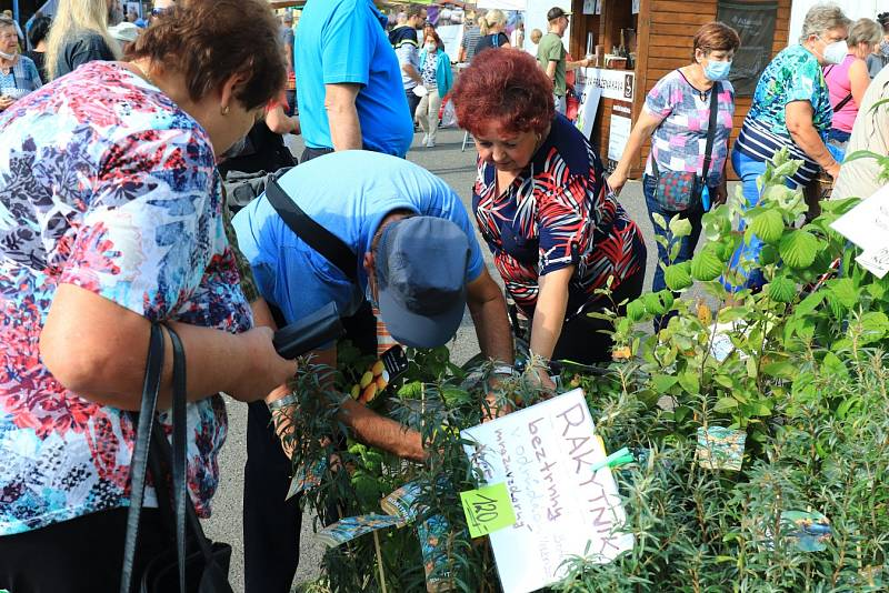 Zahrada Čech v Litoměřicích o víkendu přilákala tisíce lidí.