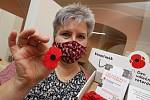 Pracovnice Městského úřadu Litoměřice Julie Štroblová ukazuje kasičku a květ vlčích máků jako symbol válečných veteránů