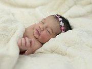 Michelle Hannichová se narodila Barboře Hannichové ze Štětí 21.3. v 11:05 hodin v Roudnici n.L. (2,97 kg a 48 cm).