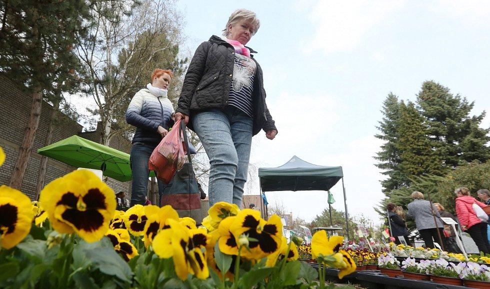 Tržnice Zahrady Čech, středa 5. dubna 2017