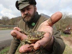 DANIEL PITEK hospodaří v okolí Milešova. Je známým ochráncem přírody. Zapojuje se například do záchrany žab.