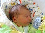 Teodor Novák  se narodil  Ivaně a Tomáši Novákovým z Litoměřic 24.4.  v 22:47 hodin v Litoměřicích (3,63 kg a 52 cm).