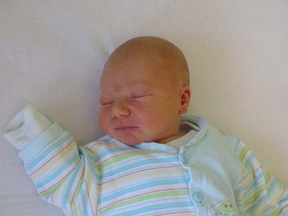 Žafré Latislav se narodil Haně a Filipu Latislavovým z Litoměřic 29.1.2019 v 7.24 hodin v Litoměřicích (50 cm a 3,83 kg).