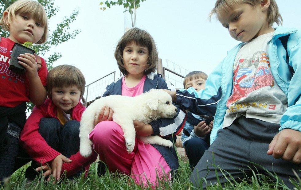 Zábavné dopoledne si užily děti ze školek na Štětsku v zemědělské farmě v Ředhošti, 2009