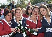 Vinobraní ve Velkých Žernosekách 2017.