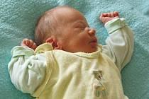 Andree Hladké a Petru Tůmovi z Českých Kopist se 28.7. ve 14.41 hodin narodil v Litoměřicích syn Petr Tůma (49 cm, 2,83 kg).