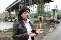STAROSTKAa Vchynic Jana Chládková stojí před rozestavěným dálničním mostem, který by měl být jako součást dálnice D8 dostavěn během příštího roku. Pak se snad situace v obci zklidní, věří místní.