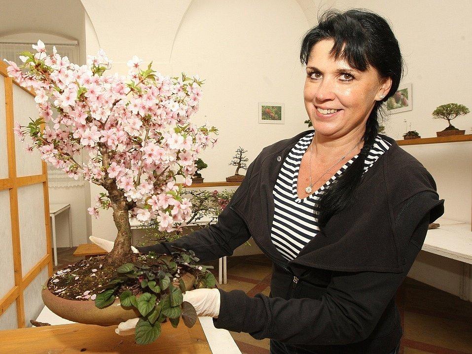 Na zámek lákají kvetoucí bonsaje