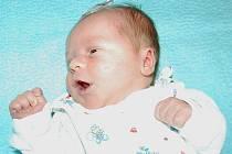 Nikole Havlíčkové a Michalu Štruplovi ze Sulejovic se 7.7. v 18 hodin narodil v Litoměřicích syn Mikuláš Štrupl (3,2 kg, 47 cm).