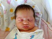 Nina Seemannová  se narodila  Tereze Melicharové a Janu Seemannovi z Lovosic 21.4. v 21:30 hodin v Litoměřicích (3,3 kg a 49 cm).