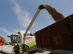 Zemědělské družstvo Liběšice v uplynulém víkendu sklízelo poslední hektary s ozimým  ječmenem na pozemcích pod Sedlem. K sečení vyjeli dvěma vlastními kombajny, další dva stroje vypomáhaly službou.