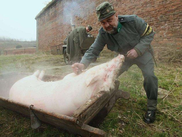 Plukovní zabíjačka u příležitosti secvičné klubů vojenské historie v Terezíně  v rakousko-uherských uniformách.