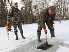 Rybáři z místní skupiny Doksany se v sobotu ráno sešli u slepého ramene Ohře, aby vykonali svou zimní povinnost. Péče o život pod hladinou řeky je totiž celoročním úkolem.