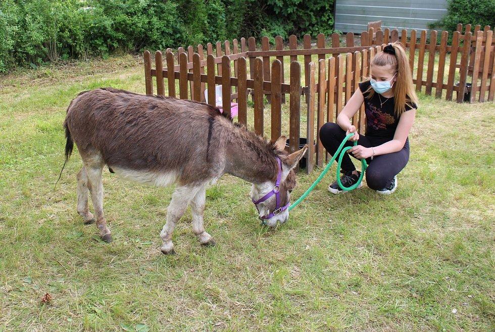Odpoledne se zvířátky z Adélčina dvorečku připravil ve čtvrtek pro děti Dům dětí a mládeže Rozmarýn v Litoměřicích.