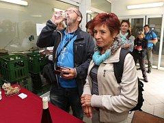 Vinaři o víkendu znovu otevřou své sklepy. Milovníci vína budou putovat po regionálních vinařstvích.