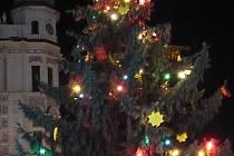 Vánoční strom v Roudnici.