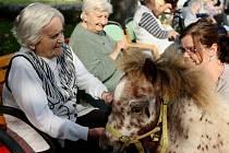 O nemocné Alzheimerem se starají například v Domově seniorů Kréta v Terezíně.
