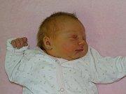 Tereza Barusová se narodila Haně a Martinu  Barusovým ze Žalhostic  21.11. v 22.33 hodin  v Litoměřicích.  Měřil 55 cm a vážil 4,8 kg.