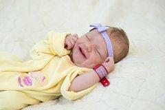 Ellen Gollerová se narodila Ireně Michaličové a Lukáši Gollerovi z Libochovic 26.8. v 15.08 hodin v Roudnici n.L. Měřila 49 cm, vážila 3,05 kg.