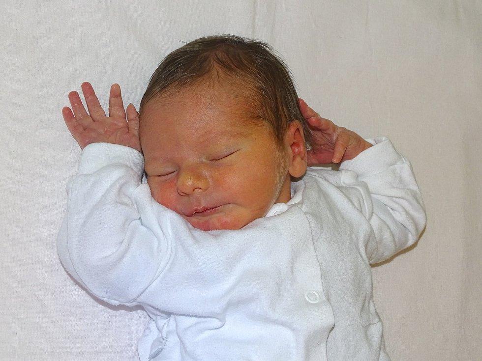 Mikuláš Lattner se narodil  Kamile a Michalu Lattnerovým z Litoměřic 13.1.2019 v 11.27 hodin v Litoměřicích (3,53 kg a 51 cm).