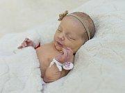 Veronika Algerová se narodila Márii Hrnčálové a Pavlu Algerovi z Roudnice n.L. 17.2. v 0.55 hodin v Roudnici n.L. (3,01 kg a 49  cm).
