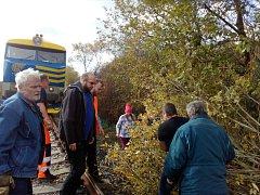 Turistická linka mezi Lovosicemi a Mostem jezdila s menším zpožděním, strojvedoucí občas zastavil, aby odklidil strom přes koleje.