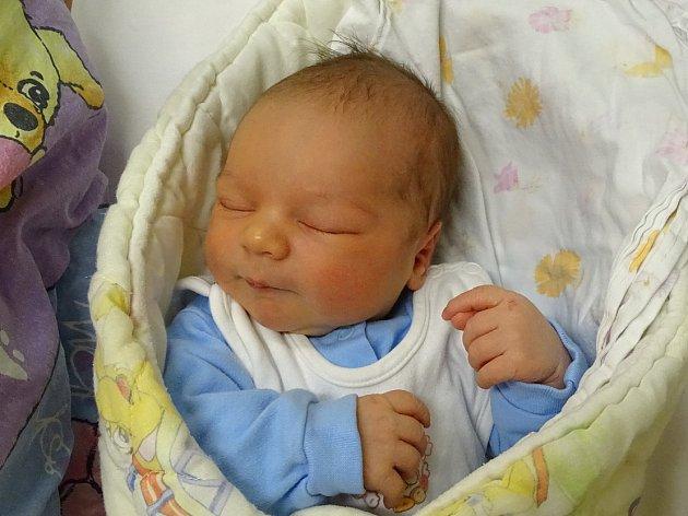 Sebastian Bíbrlík  se narodil Tereze a Karlu  Bíbrlíkovým zLitoměřic 20.12.ve 4:07 hodin vLitoměřicích (3,71kg a 52cm).