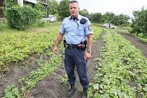 Krádeží zemědělských výpěstků přibývá. Třebenický strážník Tomáš Rotbauer řeší již několik přestupků kdy chytil zloděje přímo při činu jak krade brambory přímo z pole.