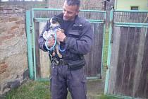 Strážník Tomáš Rotbauer se psem, kterého někdo hodil přes plot