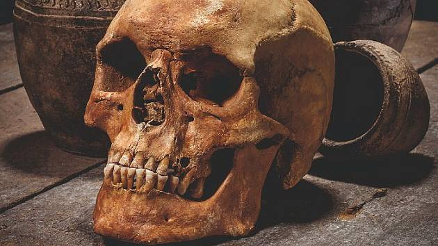 Výsledky archeologického výzkumu u Mlékojed budou od čtvrtka k vidění v Podřipském muzeu v Roudnici nad Labem na výstavě s názvem Smrtí to nekončí, aneb 1000 let spali ve stínu Radobýlu.