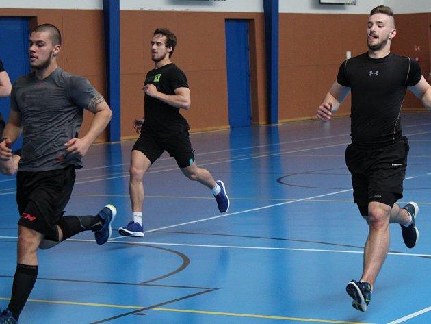 Hokejisté Stadionu Litoměřice zahájili přípravu na sezonu.