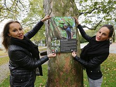Zaměstnankyně litoměřického úřadu instalují v Jiráskových sadech Výstavu na stromech.
