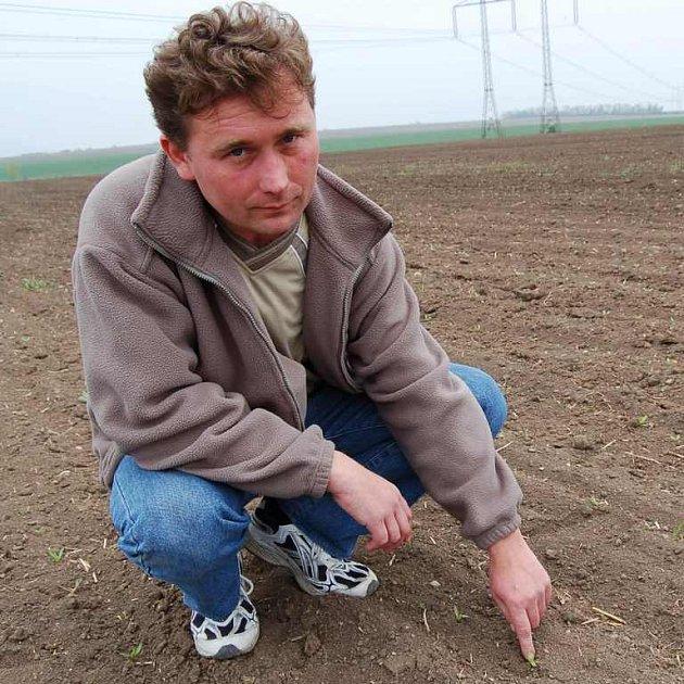 Sucho trápí i hlavního agronoma ZD v Klapém Pavla Vodenku