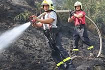 Plameny se ve středu 1. srpna dopoledne vzňaly v lese u Litochovic nad Labem.