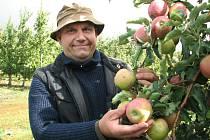 Ovocnář Miloslav Jelínek z Těchobuzic má radost z letošní úrody jablek.