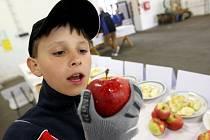 DEGUSTACE. V Soběnicích na cyklisty a další účastníky Slavností květů v sobotu čekala mimo jiné degustace pěstovaných jablek. Do sadů se přijel podívat také  Lukáš Veleba z Vraňan u Mělníka.