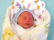 Artěmij Ardelan se narodil Haně a Vladimíru  Ardenalovým z Litoměřic 10.12. ve 14:59 hodin  v Litoměřicích. Měřil 49 cm a vážil 3,42 kg.