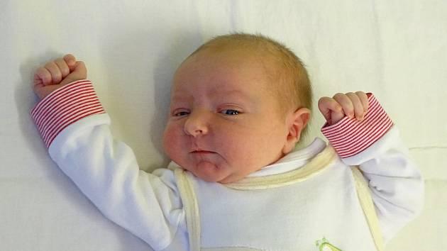 Viktorie Caithamlová se narodila Andree Soukupové a Janu Caithamlovi z Bílého Újezdu  24. prosince v 9.53 hodin v Litoměřicích (52 cm a 3,81 kg).