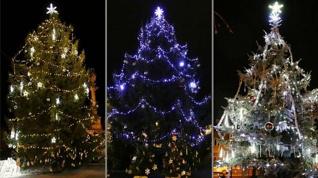 Hledáme nejhezčí vánoční strom Litoměřicka
