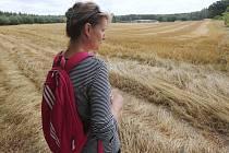 UKRADENÁ PŠENICE. Celkem zhruba osmapadesát tun cizí pšenice sklidil v uplynulém týdnu na polích na Litoměřicku třiapadesátiletý zemědělec z Bohušovic nad Ohří. Navíc ne všechno obilí už bylo zralé. Využít tak nyní půjde pouze pro krmné účely.