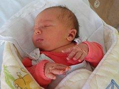 Martině a Liboru Břížtělovým z Lovosic se 20.8. v 7.38 hodin narodila v Litoměřicích dcera Lucie Břížtělová (50 cm, 3,78 kg).
