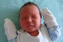 Richard Šmidt se narodil  Karolíně Ženklové a Štefanovi Schmidtovi z Brozan n. Ohří 6.7. ve 13:04 hodin v Litoměřicích. Měřil 52 cm a vážil 3,29 kg.