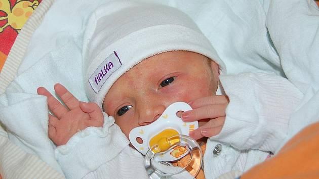 Michaele Herclové a Tomášovi Horčičkovi z Býčkovic se v litoměřické porodnici 30. července v 15.28 hodin narodila dcera Natálie Herclová. Měřila 48 cm a vážila 2,59 kg. Blahopřejeme!