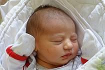 Malvína Floriánová se narodila Nikole a Stanislavu Floriánovým z Litoměřic 25.4. v 10:31 hodin v Litoměřicích (3,59 kg a 52 cm).