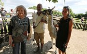 Zpěvačka Eva Pilarová přijela pokřtít do Třebívlicekého koňského ranče Pod skálou nově narozené hříbě.
