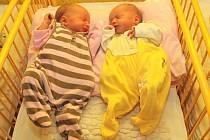 Jitce Kosprdové se 9. února v 8.52 hodin v ústecké porodnici narodila dcera Amálie Šustrová (50 cm, 2,78 kg) a v 8.53 hodin dcera  Adéla Šustrová  (45 cm, 2,15kg). Blahopřejeme!